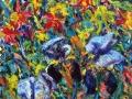181 - Irises & Columbine