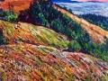 196 - Bolinas Ridge
