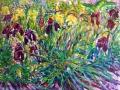205 - Purple & Yellow Irises