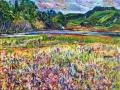 235 - Bolinas Marsh & Lagoon