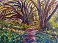 0106 - Matt Davis Trail and Trees