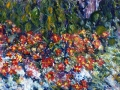 0107 - Flowers in My Back Yard