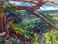 0108 -Tree & Rocks On Ridge
