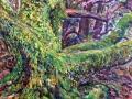0301 - Oak Tree