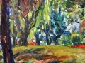 0305 - Dunphy Park, Sausalito