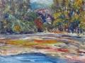 0806 - Bolinas Lagoon from Wharf Rd