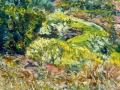 0901- Roys Redwoods Preserve View