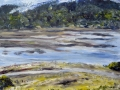 1106 - Tomales Bay, View from Giacomini Ranch