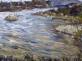 1107 - Stinson Beach Marsh
