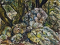 1110 - Rock Spring Rocks & Trees