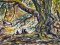 1303 - Oak Tree, Rock Spring